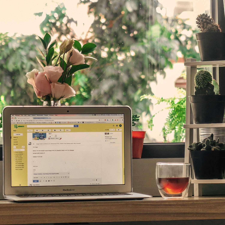 Responsive Design Website, Wordpress Premium Template, SEO Friendly